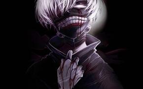Picture background, blood, mask, guy, anime, art, Tokyo ghoul, Tokyo Ghoul, Ken Kanek
