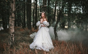 Picture forest, girl, smoke, dress, Enchanted, Alexandra Cameron