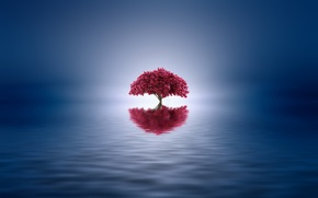 Picture lake, reflection, tree, paint, color, styling, Josep Sumalla
