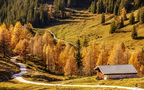 Picture road, autumn, trees, mountains, house, Germany, Bayern