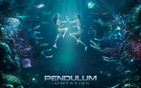 Picture Pendulum, DnB, Immersion, AMD