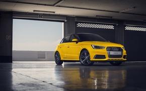 Picture Audi, yellow, Sportback