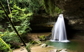 Picture forest, trees, rock, waterfall, stream