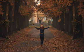Picture leaves, girl, alley, Light moving