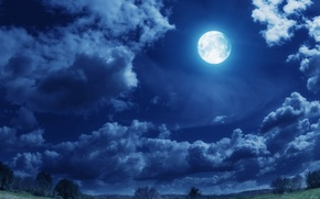 Picture field, clouds, trees, lights, the moon, the full moon