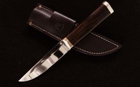 Wallpaper leather, knife, background, sheath