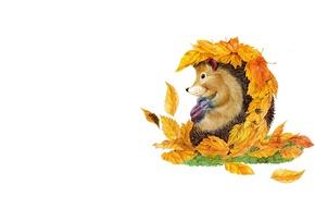 Picture autumn, art, leaf, hedgehog, children's
