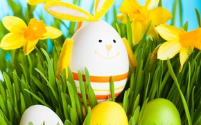 Picture grass, flowers, eggs, spring, rabbit, Easter, grass, flowers, daffodils, spring, eggs, easter, bunny, daffodils