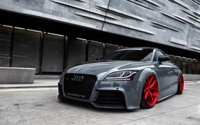 Picture Audi, quattro, Wheels, Avant-Garde