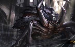 Picture hon, Heroes of Newerth, moba, Arachnae, Arachna