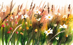 Picture summer, style, background, picture, watercolor