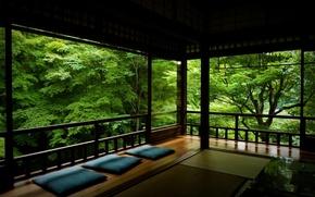 Wallpaper foliage, peace, Veranda, trees