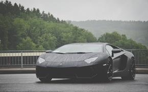 Picture black, cars, lambo, matte black, matte, avenator