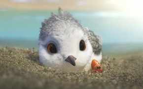 Picture bird, new, disney, cute, Piper, 2016, anim