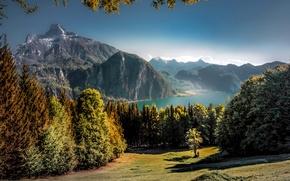 Picture autumn, trees, mountains, lake, beauty, Austria