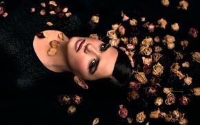 Wallpaper makeup, petals, Sabina, dry flowers
