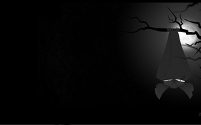 Picture night, fear, darkness, vampire, Bat, the full moon