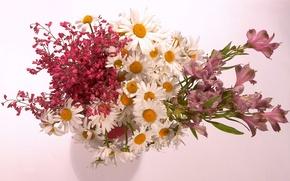 Picture Wallpaper, chamomile, bouquet, vase