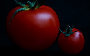 Picture macro, small, large, tomatoes