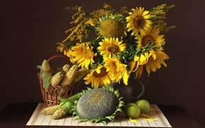 Picture sunflowers, apples, corn, still life, seeds
