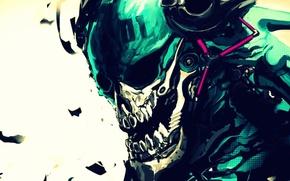 Picture skull, teeth, Sake