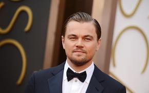 Picture male, actor, Leonardo DiCaprio
