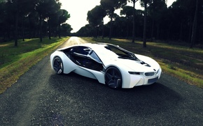 Picture road, grass, trees, BMW i8 concept