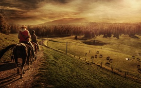 Picture animals, pasture, hill, highlands, people, horse, trail, hill, railroad, field, forest, riders, horizon, riders, landscape