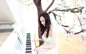 Picture girl, music, Asian, piano, the bride