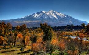 Wallpaper mountain, trees, autumn