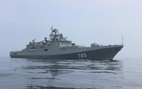 Picture ship, frigate, head, project 11356, guard, Admiral Grigorovich