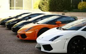 Picture Lamborghini Gallardo, Lamborghini Cars, Three Lamborghini Wallpaper, Lamborghini Gallardo Wallpaper, Lambo Wallpaper
