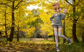 Picture autumn, leaves, trees, nature, toy, doll