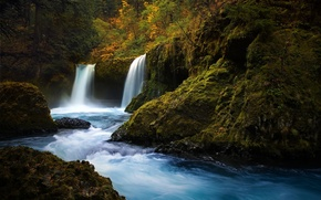 Picture forest, nature, river, stones, waterfall, moss
