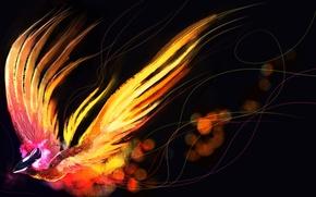 Picture bird, art, Phoenix, Dota 2, Phoenix