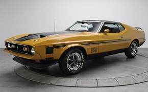 Picture background, Mustang, Ford, Ford, 1971, Mustang, brown, the front, Muscle car, Mach 1, Muscle car