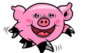 Picture smile, fun, pig