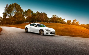 Picture Toyota, Car, White, Sport, GT86, Shade, Photoworks