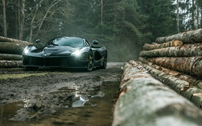 Picture Dark, Ferrari, Front, Black, Supercar, Forest, LaFerrari