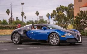 Picture veyron, bugatti, black, blue, parking