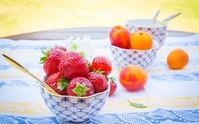 Picture summer, berries, table, strawberry, fruit, tablecloth, apricots, bowl