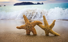 Wallpaper stars, Shore, sand