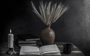 Picture books, candle, ears, The light of knowledge