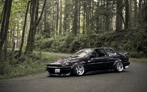 Picture forest, black, Toyota, black, Toyota, AE86, stance, Corolla, JDM, Corolla