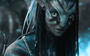 Picture avatar, Neytiri, na'vi, neytiri