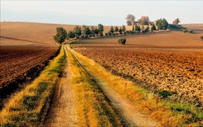 Picture road, autumn, trees, field, houses, Sunny