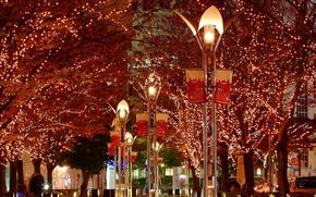 Wallpaper lights, Yolanda, trees, the city