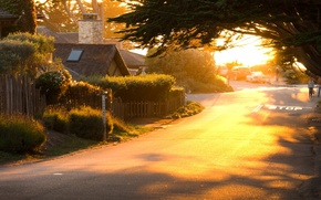 Picture morning, widescreen, road, day, HD wallpapers, Wallpaper, machine, the city, tree, house, greens, full screen, ...
