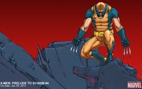 Picture Wolverine, Logan, Wolverine, marvel, comic