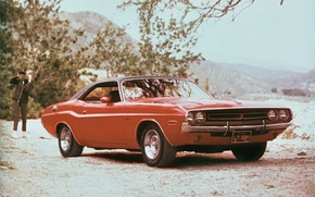 Picture Dodge, muscle car, machine, the front, 1971, handsome, Challenger